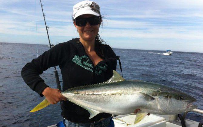 narooma kingfish